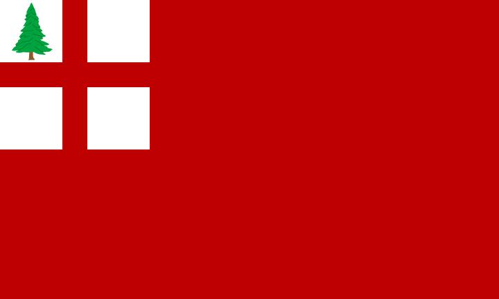 Flag of New England